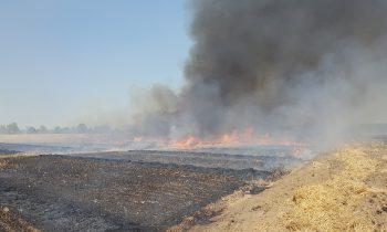 Großbrand: Feuerwehr verhindert Schlimmeres