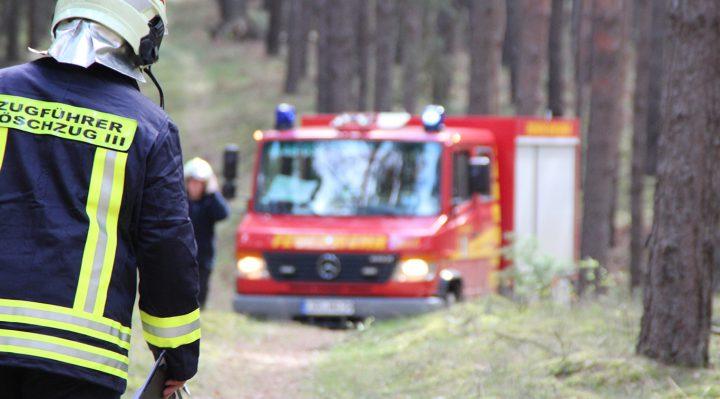 Waldbrandgefahr steigt: Alle Osterfeuer abgesagt!