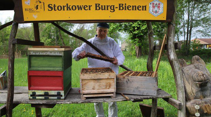 Der Imker Holger Ackermann an dem Bienenstock, der jetzt beschädigt wurde. Foto: Marcel Gäding