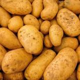 Werbung: Großes Kartoffelbuddeln an zwei Wochenenden