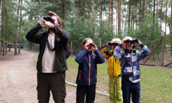 Herbstferien in Storkow: buntes Programm für kleine Entdecker