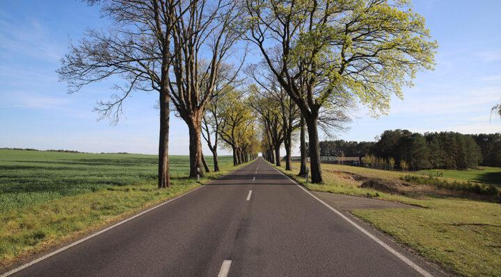 Neben dieser Landstraße zwischen Bugk und Kehrigk könnte ein neuer Radweg entstehen. Foto: Marcel Gäding