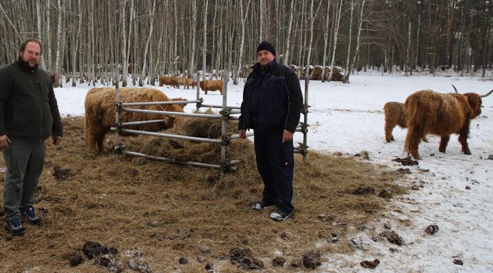 Stephan (links) und Björn Schulze auf einer der beiden Weiden in Bugk. Das Futter für ihre Schottischen Hochlandrinder bauen sie selbst an. Foto: Marcel Gäding